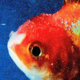 https://i2.wp.com/upload.wikimedia.org/wikipedia/en/c/c0/Vince-Staples-Big-Fish-Theory.jpeg?w=525&ssl=1