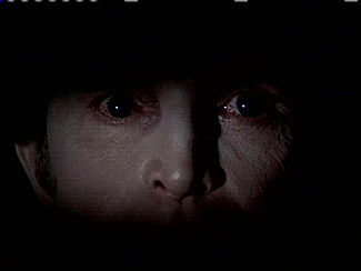 The Night Stalker (film)