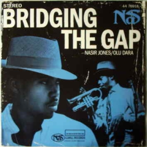 Bridging the Gap (song)