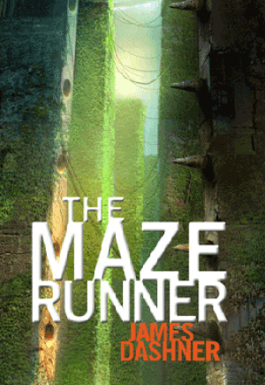 maze, THE MAZE RUNNER: A WELCOME ENTRY INTO THE GENRE, Zone 6