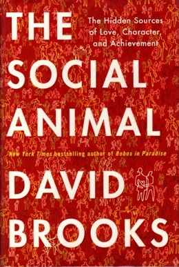 The Social Animal (David Brooks book)