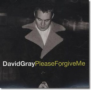David Gray Please Forgive Me US promo single