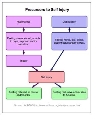 What is Self-harm? 10 common methods (3/4)