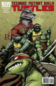 Teenage Mutant Ninja Turtles  IDW Publishing    Wikipedia The cover of issue number 2  Art by Dan Duncan  colors by Ronda Pattison