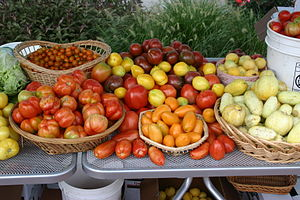 Heirloom Tomatoes 2 ERD