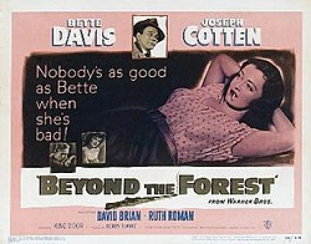 Image result for bette davis in beyond the forest