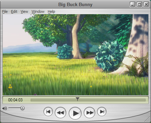 QuickTime Player 7.6.6 running on Microsoft Wi...