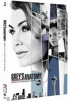 Grey S Anatomy Season 14 Wikipedia