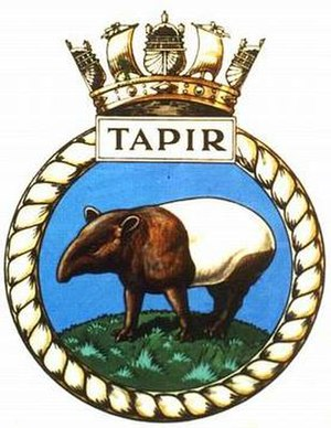 HMS Tapir (P335)