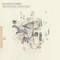 The Midnight Organ Fight album cover