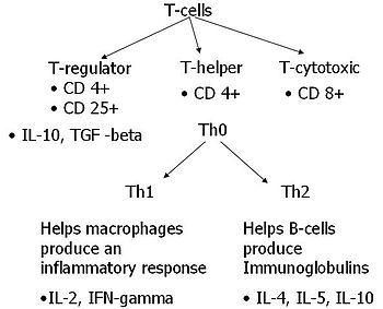 Cytokines involved in IBD