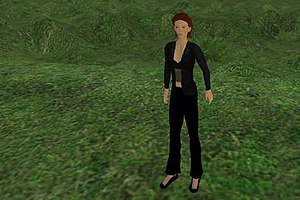 Avatar in Second Life