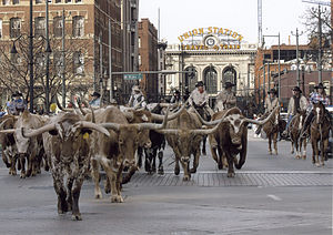 National Western Stock Show Parade - 17th Stre...