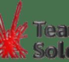 Team Solent F.C. logo.png