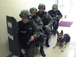 SWAT and Tactical K-9
