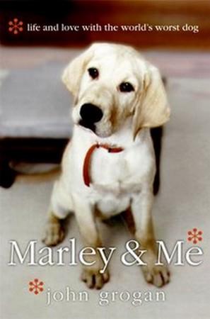 """Resultado de imagem para marley e eu"""""""