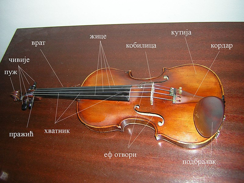 Датотека:Violin - parts (Serbian).jpg