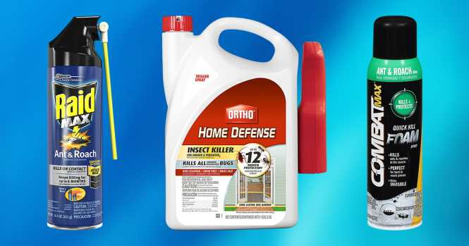 Hot Shot Ant And Roach Killer 17 5 Oz Aerosol Fresh Floral Scent Spray Twin Pack