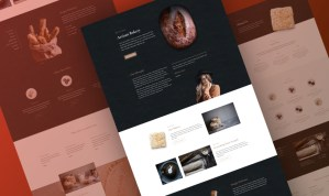 Download Divi Bakery Layout