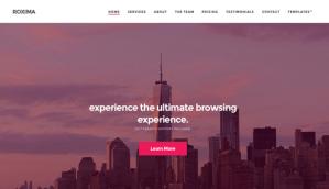 CSS Igniter Roxima WordPress Theme