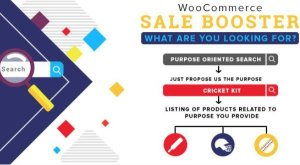 Woocommerce Sale Booster – What are you looking for