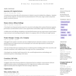 Nurse Resume Example Writing Tips For 2021