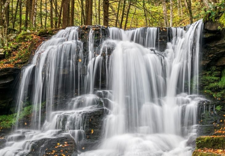 Dry Run Falls, Loyalsock State Forest