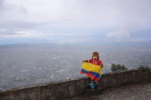 oso.berni.colombia.14
