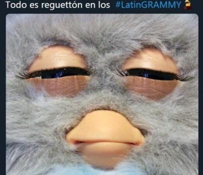 latin 6