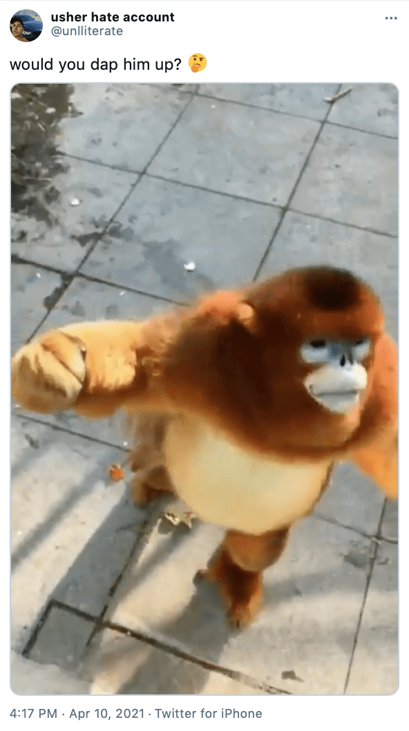 """would you dap him up? 🤔"" still of the gold and brown furred monkey with his arm raised like he's wanting to dap"