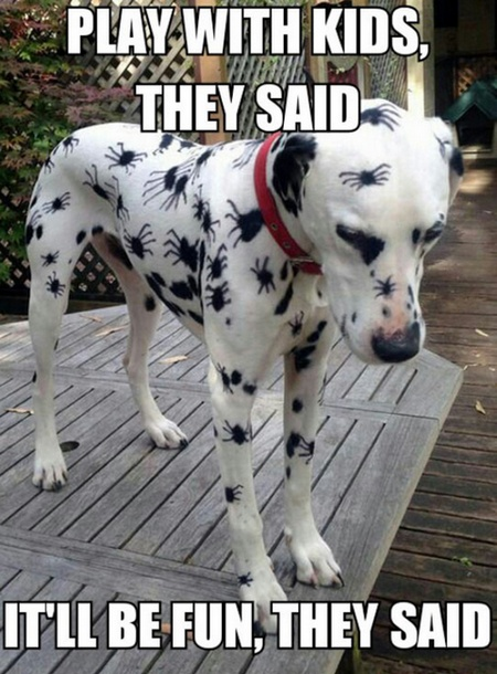 A Dalmatian hangs its head while the spots normal for the breed show, upon inspection, that they have been modified with permanent ink to have eight little legs extending from each round spot. As a result, the poor dog looks as if it is covered in cartoon spiders.