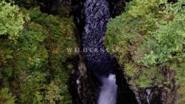 VIDEO: Wilderness (04:55)