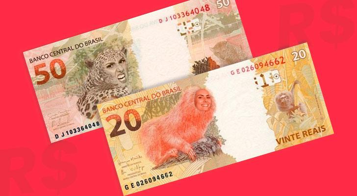 PRATODOSVEREM: Notas de 20 e 50 reais com a face dos animais aparecendo.