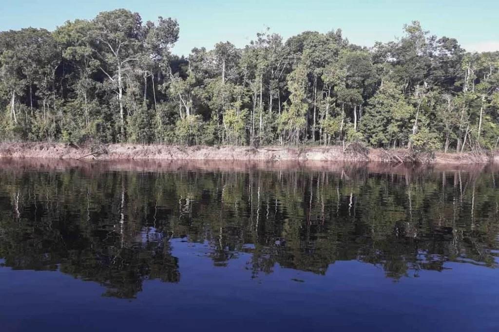 Segundo dados do Instituto Nacional de Pesquisas Espaciais (Inpe), entre agosto do ano passado e julho deste ano, os alertas de desmatamento na Amazônia tiveram aumento de 34,5%, na comparação com os 12 meses anteriores