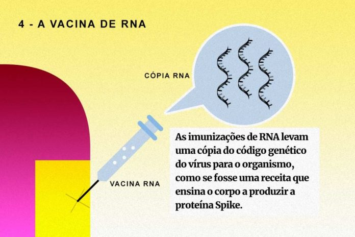 Arte / Tecnologia de vacinas