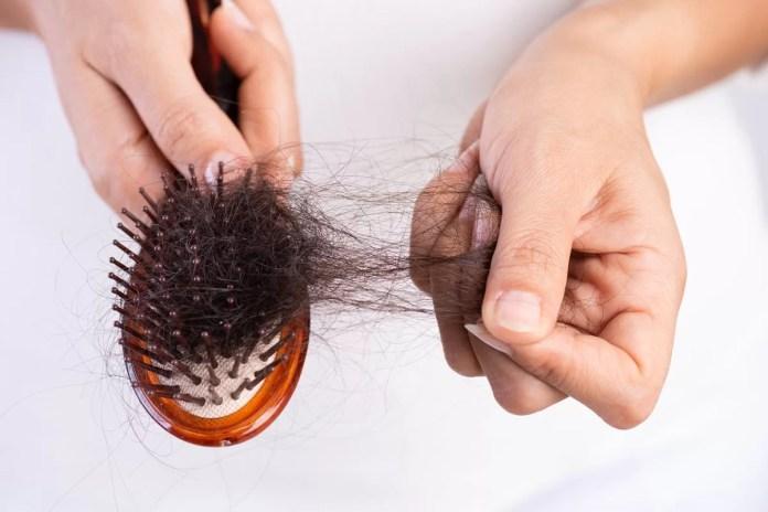 Escova com cabelo