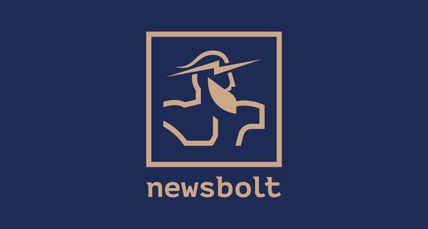 Desarrollo del logotipo: versión final del color del logotipo