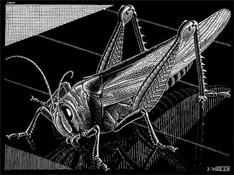 Grasshopper - M.C. Escher