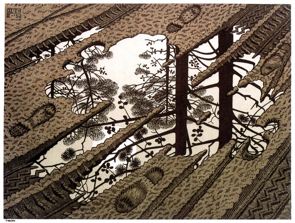 https://i2.wp.com/uploads5.wikipaintings.org/images/m-c-escher/puddle.jpg