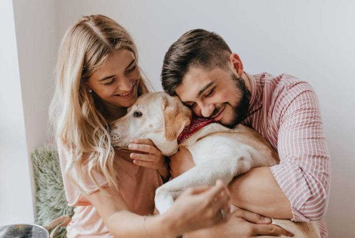 How to Take Care of Your Dog's Health – Decrease Your Dog's Cancer Risk