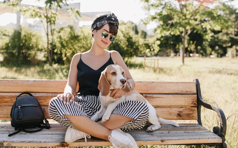 dog-vitamins-glucosamine