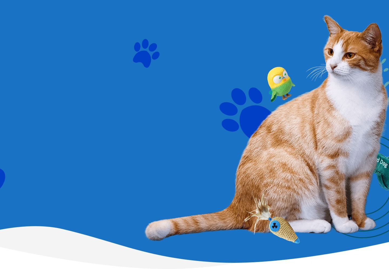 cat-urinary-health-supplement