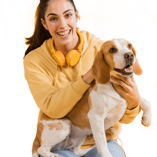 Can Dogs Get Joint Disorders?