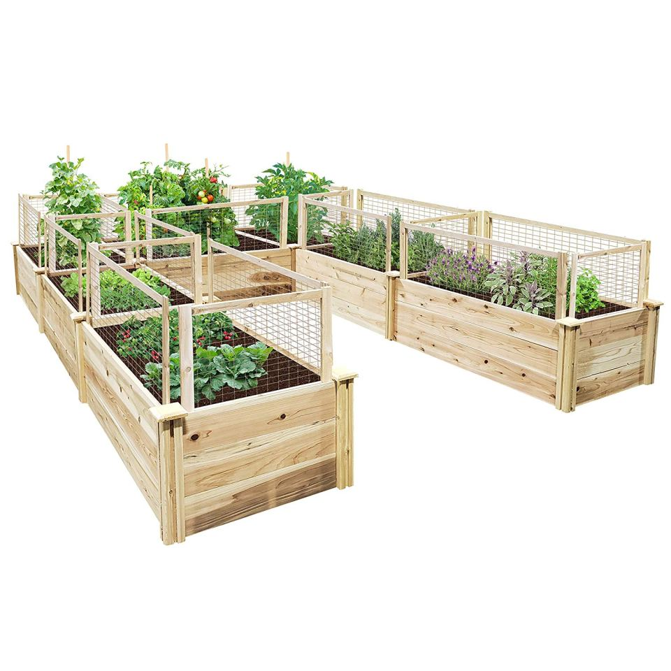 Elevated And Raised Garden Beds