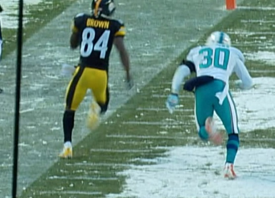 Antonio Brown came *this close* to pulling off the incredible multi-lateral time expired touchdown.