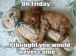 Image result for friday cute