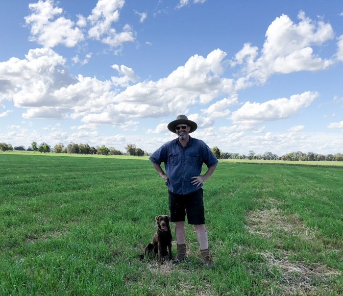 Productive Pastures with a Farmer and his dog