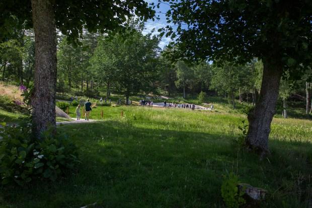 2015-07-22 HäŠllristningrna vid VŠärldsarvet i Tanumshede och Vitlycke den 22 juli 2015. (Foto: Sebastian Lindberg, 070-5547024, UppsalaBilder.Se)