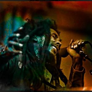 Bob Marley Gröna Lund 1980