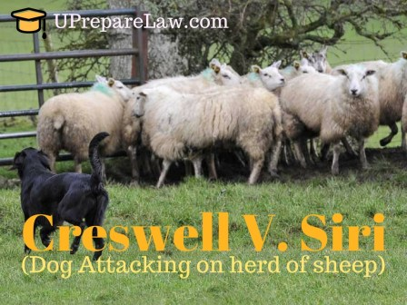 Creswell V. Siri,private defence,general defences in torts law
